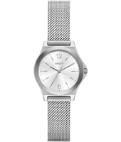 NY2488 Parsons Mini Silver Ladies Mesh Watch